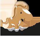 Logo GutscheinPony