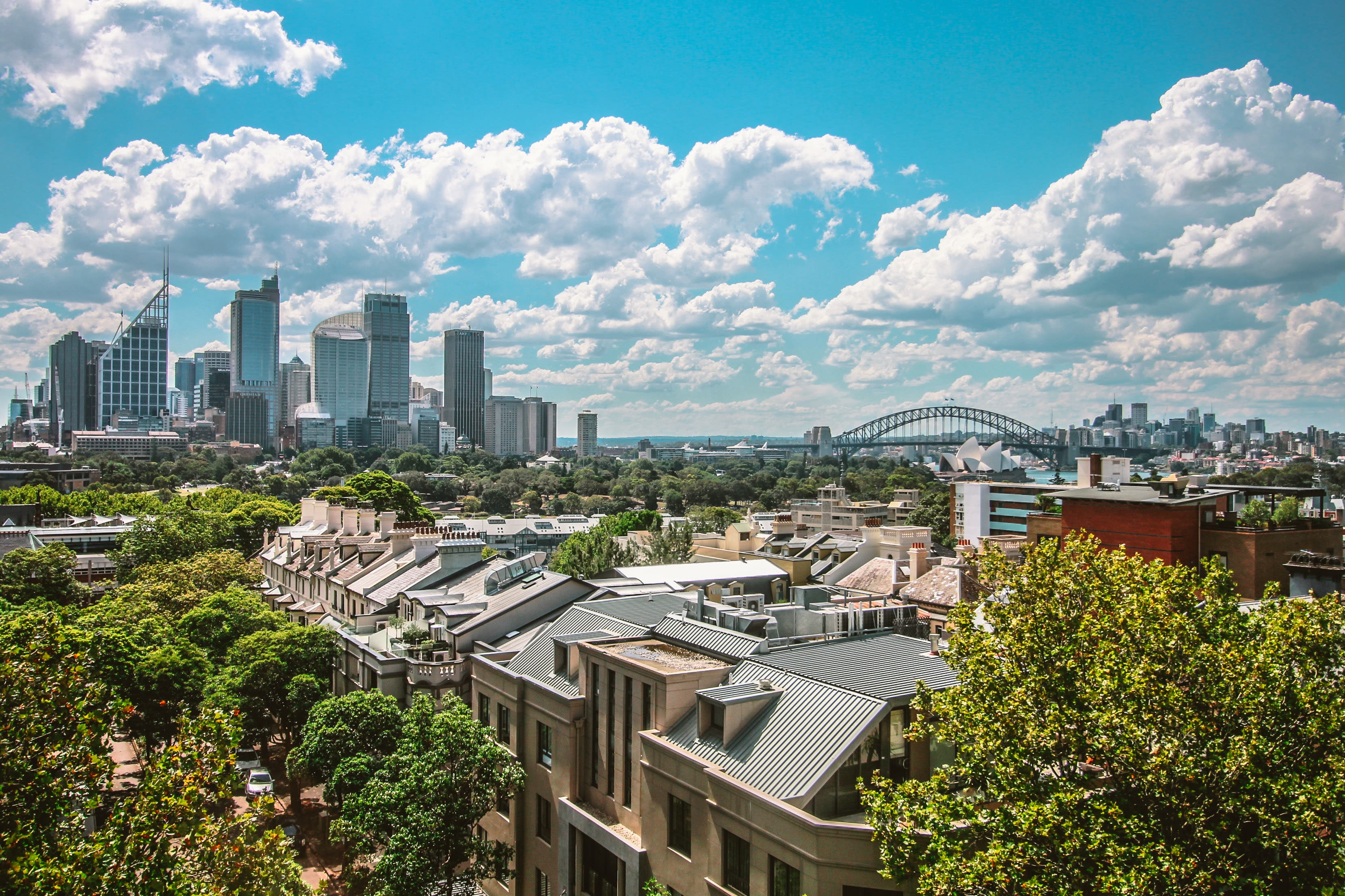 Sydney skyline with houses and trees in the foreground