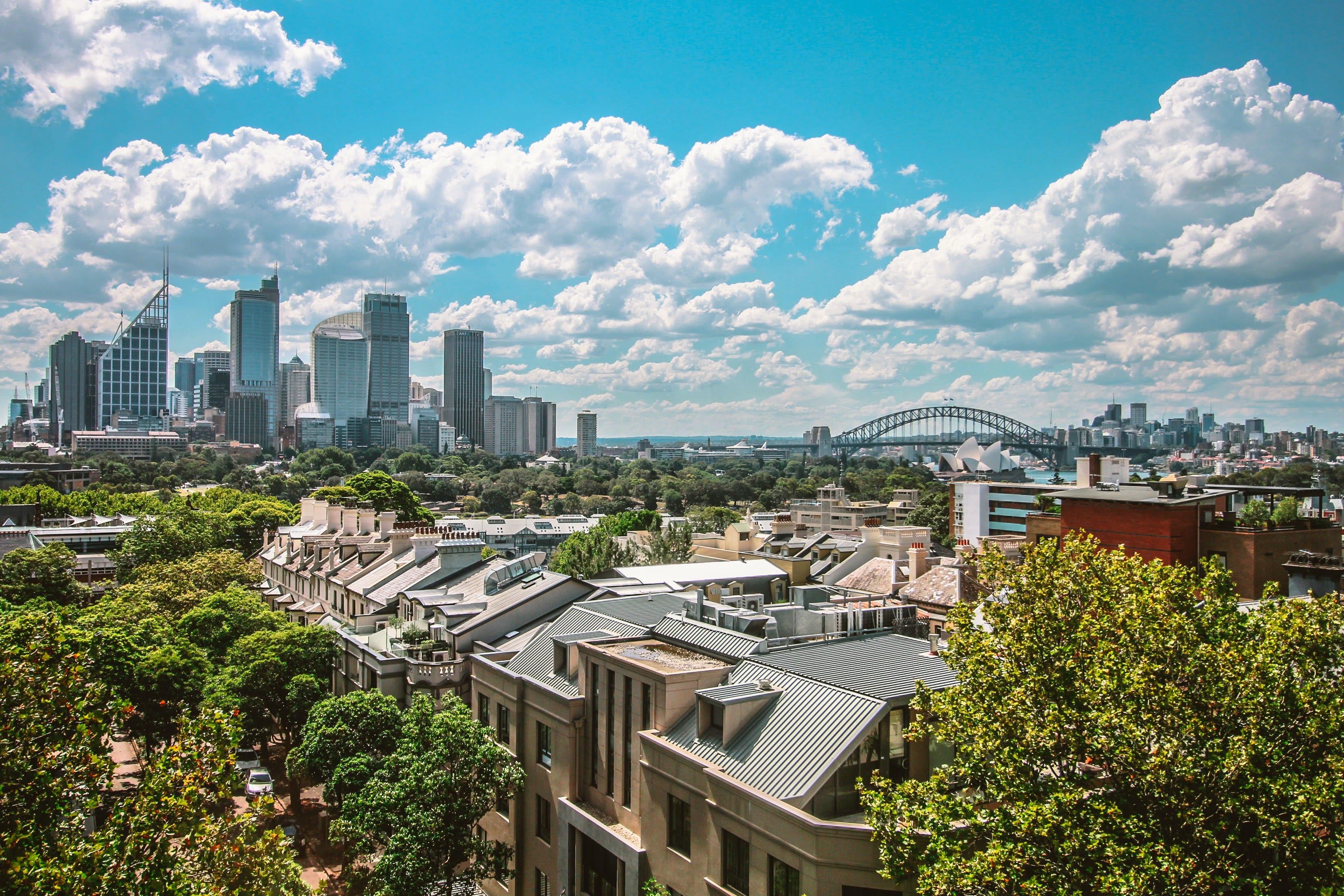 lo skyline di Sydney con alberi e case in primo piano