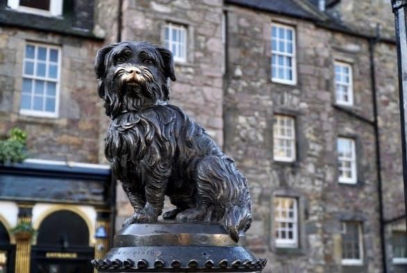 The Edinburgh Reporter